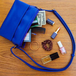 d women's accessories fell out of the blue handbag.